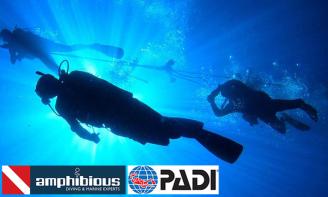 Δίπλωμα PADI & Καταδυτικές Εκδρομές με Σκάφος